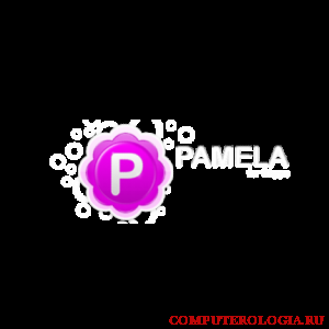 Программа Pamela for Skype